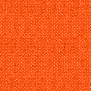 Basic Color Fun Orange 338