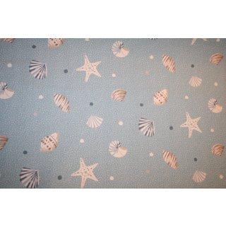 Canvas Clark & Clark Seashell Marine Maritim Muscheln