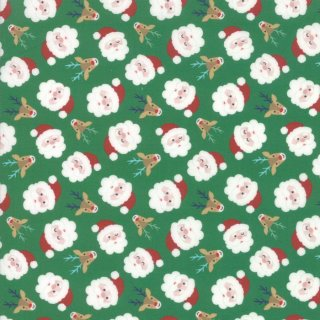 Weihnachten Christmas Jolly Season Santa Grün Spruce