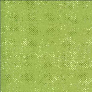 Spotted Quotation by Zen Chic #137 Pistachio Light Green Brigitte Heitland Basic