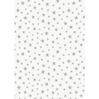 Marvellous Metallics Silber Sterne Star on Cream